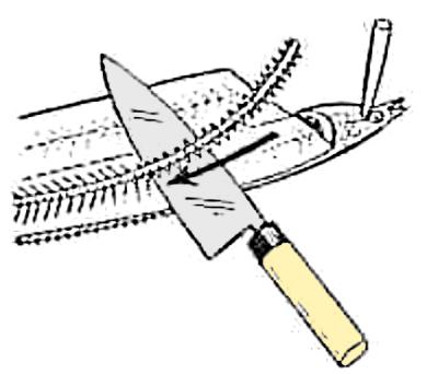 魚のさばき方 長物の開き④