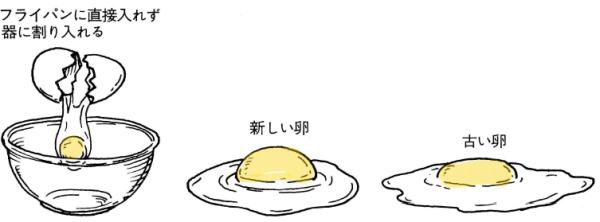 新しい卵と古い卵