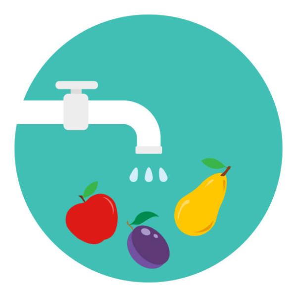 トマトやきゅうりなどの果菜類
